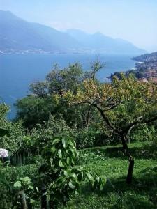 Alto Lario Nature tourist guide lake como