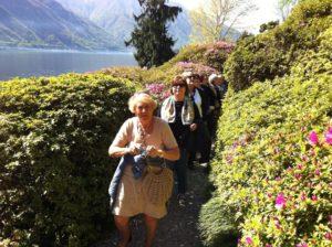 Villa Carlotta azaleas blooming